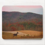 Deer on sunset golf course mouse pad