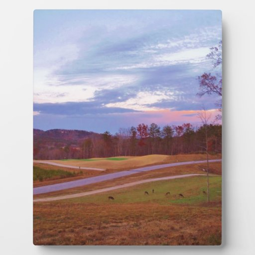 Deer on sunset golf course photo plaques