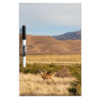 Deer on the Plains Great Colorado Sand Dunes Dry-Erase Board
