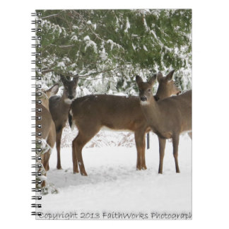 Deer on the way to church jpg note book