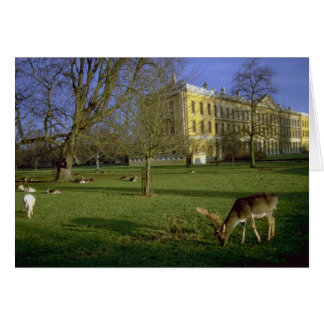 Deer park, Magdalen College, Oxford, U.K. Card