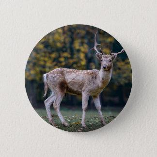 deer pinback button