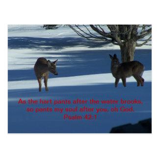 deer post card