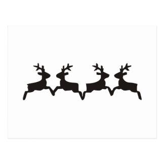 Deer Postcards