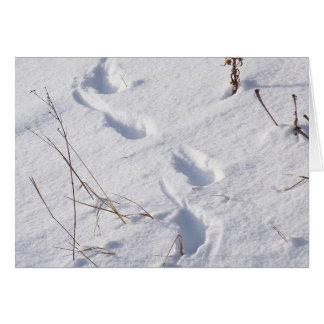 Deer Prints/Snow Card