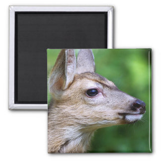 Deer - Profile of a Deer 2 Inch Square Magnet