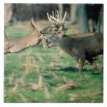Deer running in forest ceramic tile