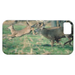 Deer running in forest iPhone SE/5/5s case