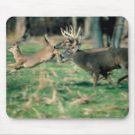 Deer running in forest mouse pad