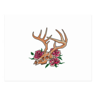 Deer Skull With Roses Postcard