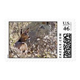 Deer stamp stamp