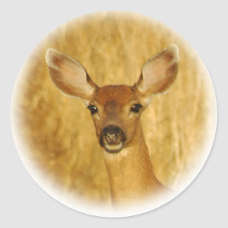 Deer Stickers