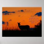 Deer Sunset Poster