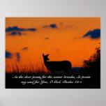 Deer Sunset Posters