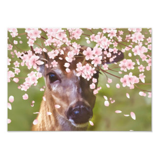 Deer Under Cherry Tree Art Photo