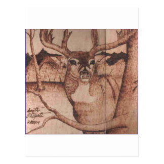 DEER WB.PNG Big Buck Wood Burning Postcard