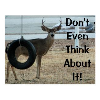 Deer With Attitude Postcard