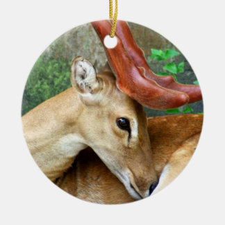 Deer with Felted Antlers Ceramic Ornament