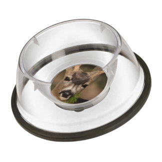 deer pet bowl