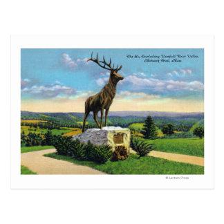 Deerfield River Valley on Mohawk Trail Postcard