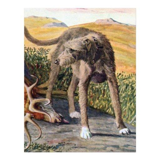 Deerhound escocés membrete a diseño