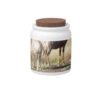 Deers Candy Jars