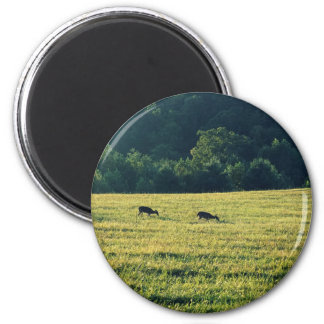 Deers Grazing 2 Inch Round Magnet