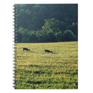 Deers Grazing Notebook
