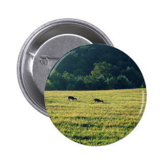 Deers Grazing Pinback Button