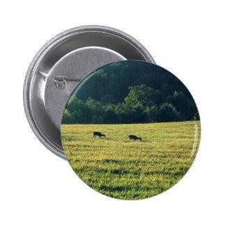 Deers Grazing Pinback Button