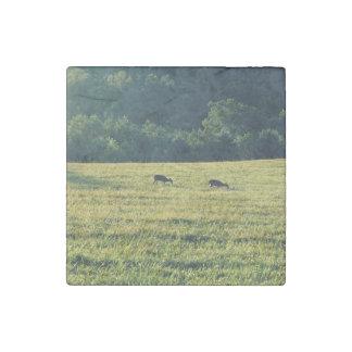 Deers Grazing Stone Magnet