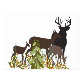 Deers in Wood Christmas Post Cards