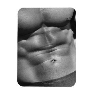 Defined abdomen of bodybuilder magnet