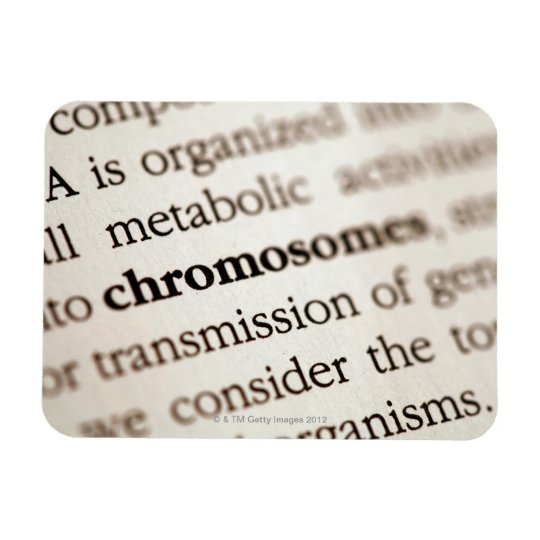 Definición de los cromosomas en la página iman rectangular