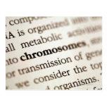Definición de los cromosomas en la página postal