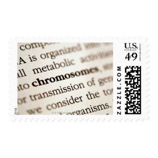 Definición de los cromosomas en la página sellos