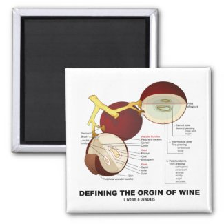 Defining The Origin Of Wine (Wine Grape Berry) Fridge Magnets