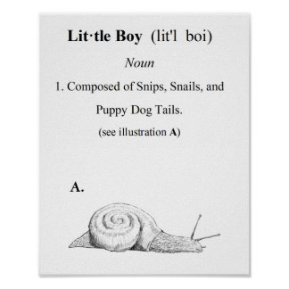 Definition of a Little Boy Poster