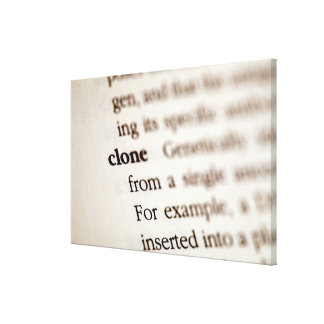 Definition of clone canvas print