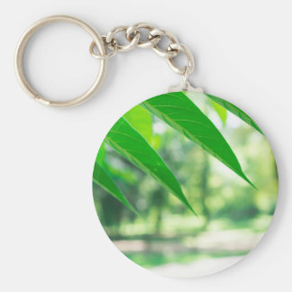 Defocused and blurred branch ailanthus keychain