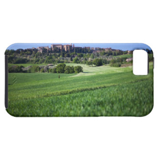 defocused grainfield with on pienza, tuscany, iPhone SE/5/5s case
