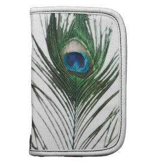 Defused Peacock Feather Sill Life Planner