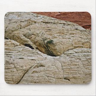 DEFYING THE ODDS, TREE BETWEEN DESERT ROCKS MOUSEPADS