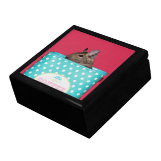 Degu in a Coffee Tin Keepsake Box