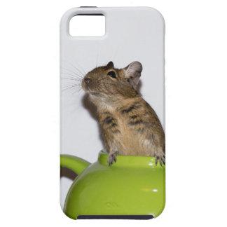 Degu in a Green Teapot iPhone SE/5/5s Case