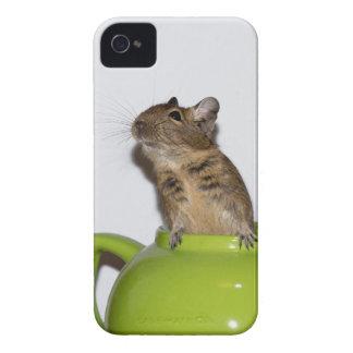 Degu in Green Teapot iPhone 4 Case-Mate Case