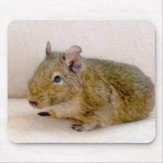 Degu Mousepad