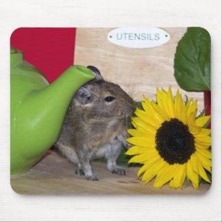 Degu with Teapot & Sunflower Mousepads