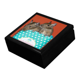 Degus in a Polka Dot Coffee Tin Jewelry Box
