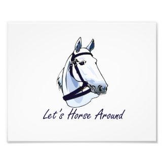 Deja el caballo alrededor del halter azul árabe cojinete